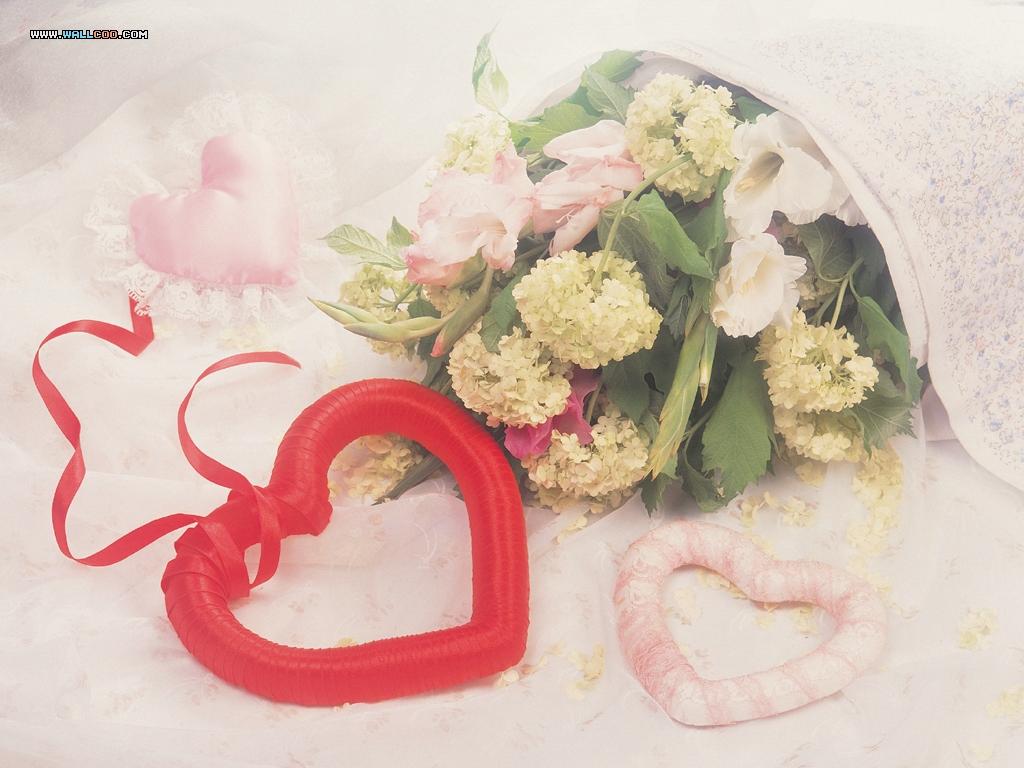 电脑玫瑰花桌面壁纸图片大全 精美玫瑰 你是我的玫瑰花 玫瑰图片