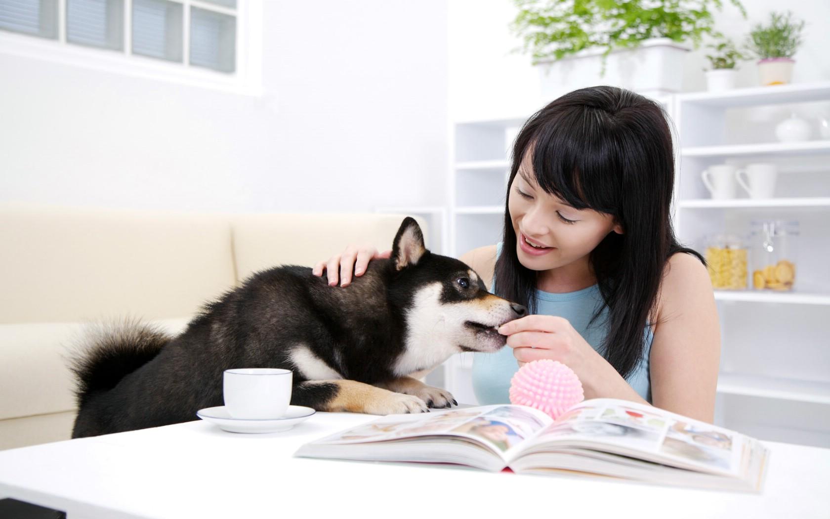 壁纸1680×1050美女与宠物壁纸壁纸 美女与宠物壁纸壁纸图片其他壁纸其他图片素材桌面壁纸