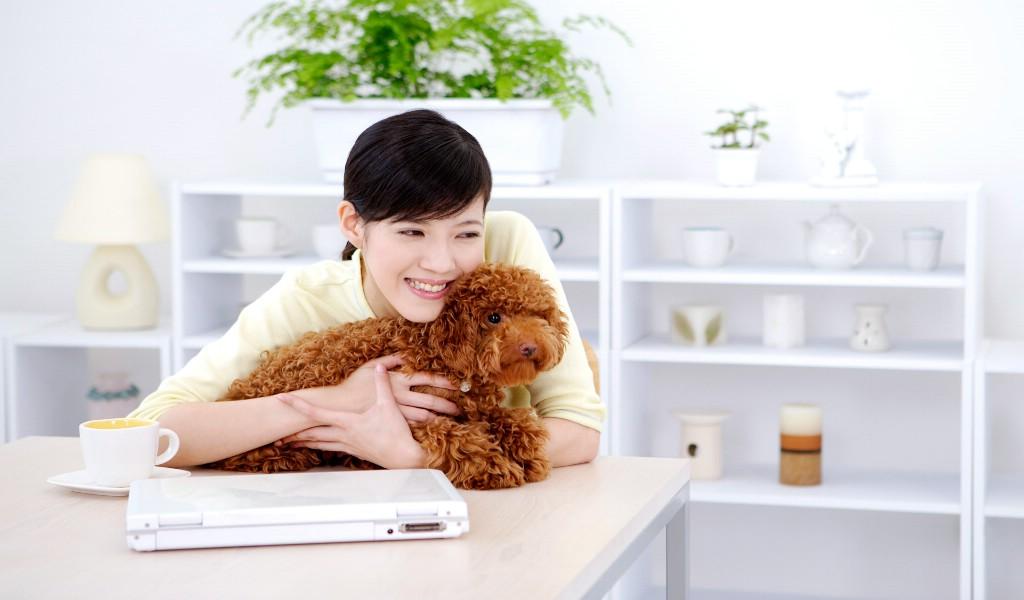 壁纸1024×600美女与宠物壁纸壁纸 美女与宠物壁纸壁纸图片其他壁纸其他图片素材桌面壁纸