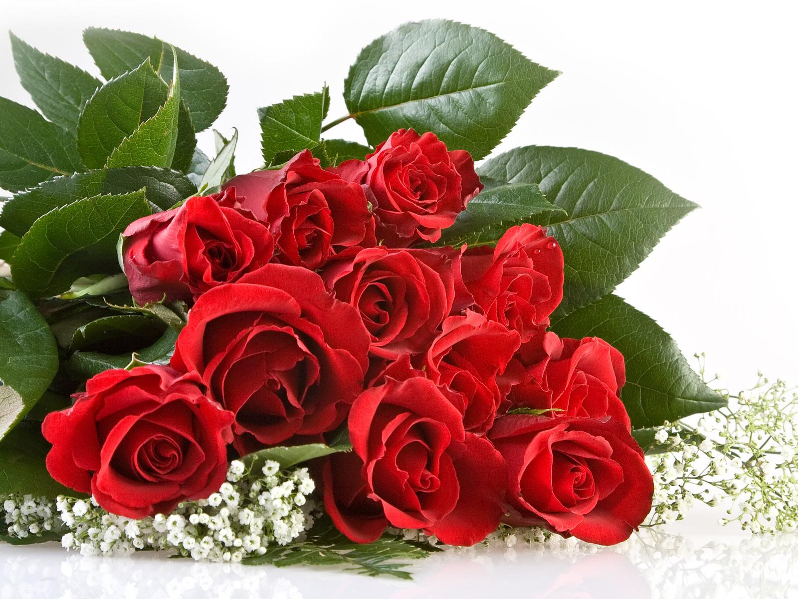壁纸1600×1200七夕情人节99张玫瑰壁纸壁纸 七夕情人节99张玫瑰壁纸壁纸图片其他壁纸其他图片素材桌面壁纸