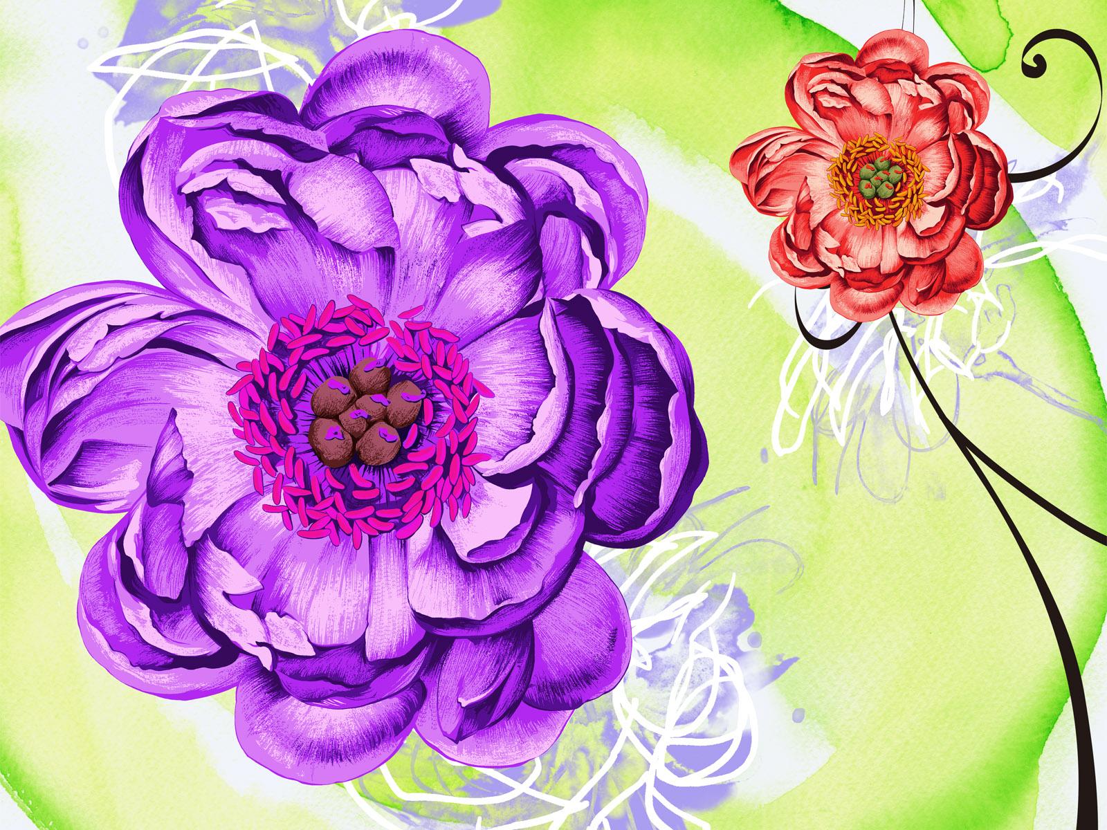 壁纸 花卉/合成花卉 高清壁纸